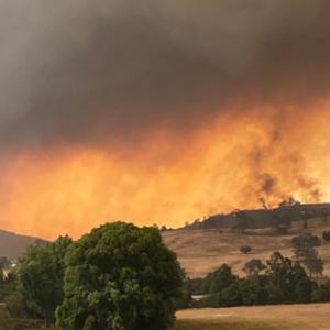 incendies en Australie
